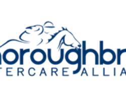 TAA & Virginia HBPA to Present Best Turned Out Awards on Virginia Derby Day