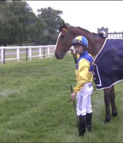Tuesday Video: Greyhound vs. Racehorse