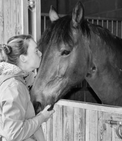 The Beauty Behind Selling a Horse