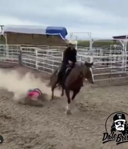 Tuesday Video: A Little Dirt Never Hurt