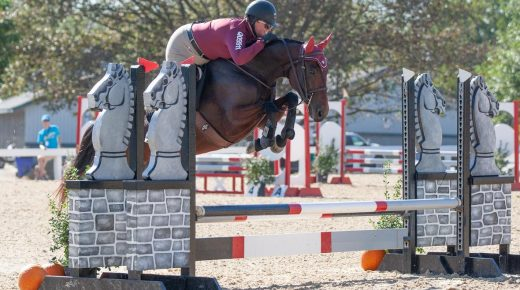 Thoroughbred Makeover Preliminary Competition Day 2 Results