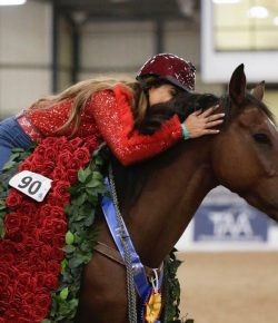 Cowboy Swagger Is 2019 Thoroughbred Makeover Champion With Fallon Taylor