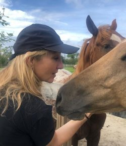 Standing Ovation by Ovation Riding: Animal Wellness Foundation