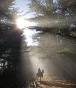 Photo Challenge: 15 Fall Scenery Snapshots
