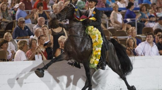Monty Roberts Reaffirms Commitment to End Soring as Tennessee Walking Horse Events Begin Amidst COVID-19