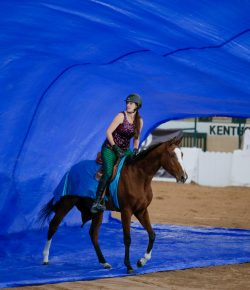 Horsemanship With Lindsey Partridge: Be Patient