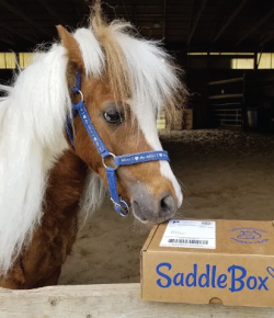 Product Review: SaddleBox
