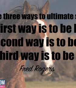 World Kindness Day: 11 Random Acts of Kindness You Can Commit in the Horse World