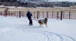 Thursday Video: Ski … Driving?