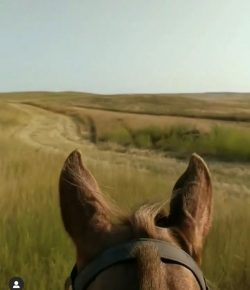 World Equestrian Brands Helmet Cam: Riding the Prairies