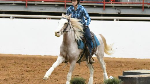 Horsemanship With Lindsey Partridge: The Importance of Speed