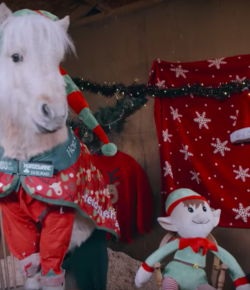 Happy Holiday Horse Video from the EQUUS Film and Arts Festival