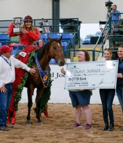 A Decade In, How Are We Doing With Thoroughbred Aftercare?