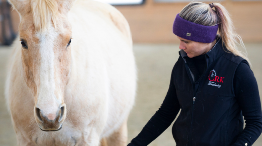 Cognitive Dissonance: Why Horse People Have Such Strong Opinions