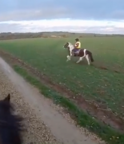 World Equestrian Brands Helmet Cam: Watch out for Those Hedges