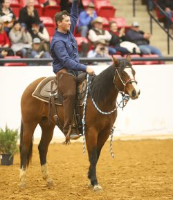 North Central Texas College Wins at the Road to the Horse Collegiate Colt Starting Challenge