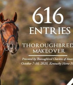 616 Entries Accepted to 2020 Thoroughbred Makeover