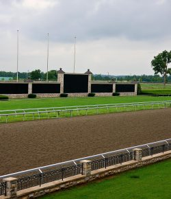 Standing Ovation by Ovation Riding: Keeneland and Churchill Downs