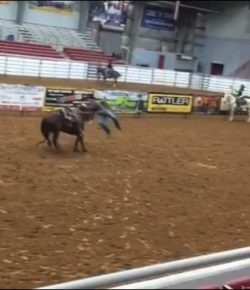Kentucky Performance Products Tuesday Video: Colorful Dismount