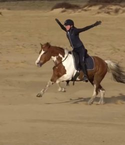 Ecovet Presents Mind Your Melon: Bridleless Galloping