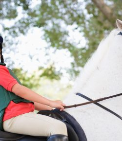 A Letter to My Significant Other: Why I Choose to Put Our Children in Riding Lessons