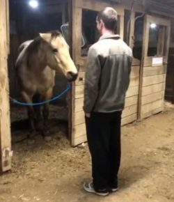 """Kentucky Performance Products Tuesday Video: A Mare's """"Love Language"""""""