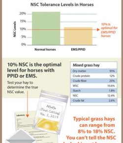 Kentucky Performance Products: Hay Management
