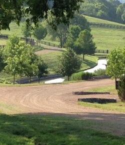 To Ride or Not to Ride: How Are Schoolers and Schooling Barns Handling COVID-19 Operations?