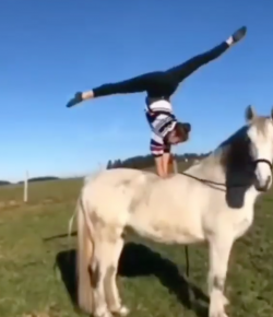 'Oh Crap' Monday: Horse Yoga?