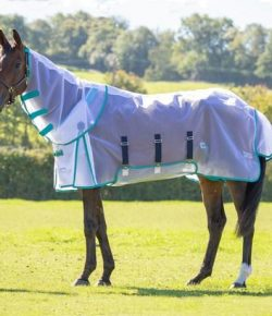 SmartPak Monday Morning Feed: Shires Fine Mesh Fly Sheet & Neck Set Review