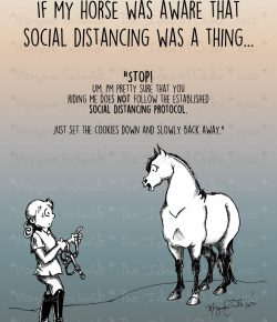 The Idea of Order: Social Distancing According to Your Horse