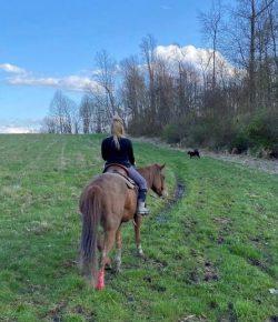 Rehabbing Funny Bunny B's Injury: Light Riding