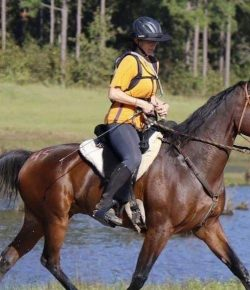 Stories of Standardbreds Part XVI: Patricia and Eli