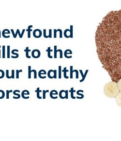 SmartPak Monday Morning Feed: Healthy Banana Horse Treats