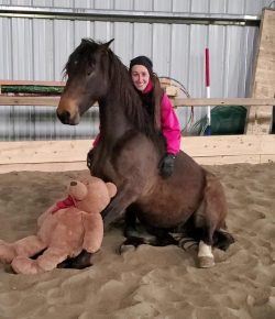 Horsemanship with Lindsey Partridge: Virtual Horse Competitions
