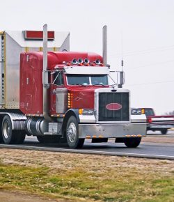 Editorial: End Dangerous Transport of Horses in Double-Deck Trailers