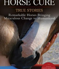Book Review: 'The Horse Cure'