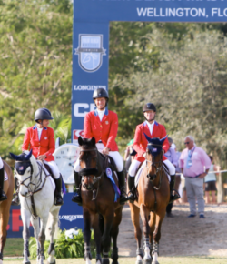 "FEI Publishes New ""Return to Play"" Policy"