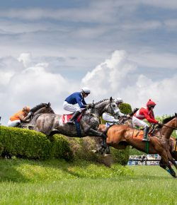 Virginia Gold Cup Will Run Without Spectators on June 27