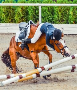6 Horse Moves That Are Sure to Land You in the Dirt