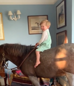 Thursday Video: Just Heading to Bed… on a Pony