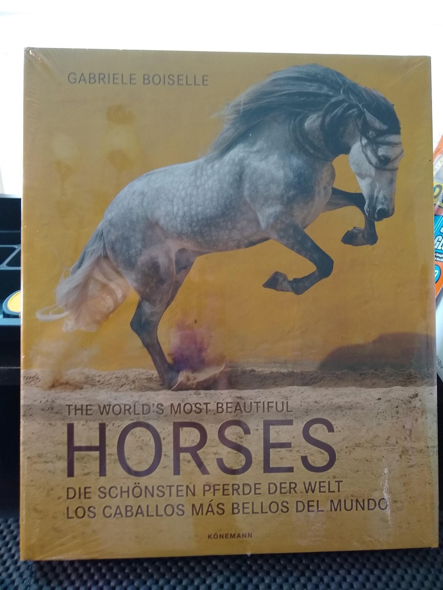 Leitor Foto Desafio: Leituras Equestres 4