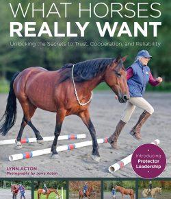 Interpreting Unwanted Behavior in Your Horse