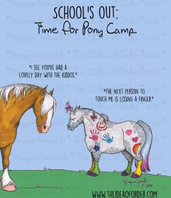 The Idea of Order: Pony Camp