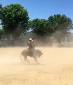 'Oh Crap' Monday: Ride 'Em, Cowb — Never Mind