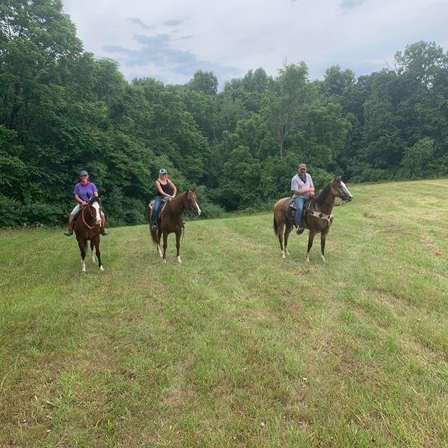 Atingindo as trilhas: O Virginia Horse Center em Lexington, VA 6