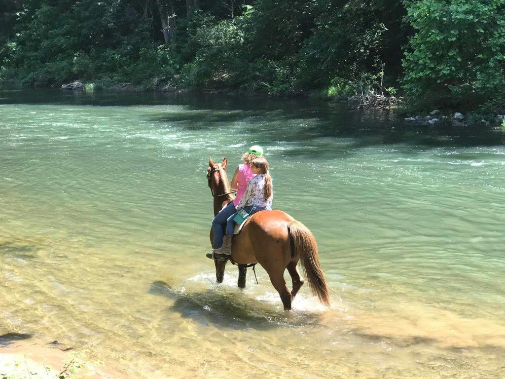 Atingindo as trilhas: O Virginia Horse Center em Lexington, VA 3