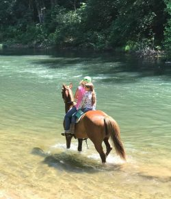 Hitting the Trails: The Virginia Horse Center in Lexington, VA