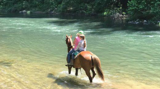Hitting the Trails: The Virginia Horse Center in Lexington, VA