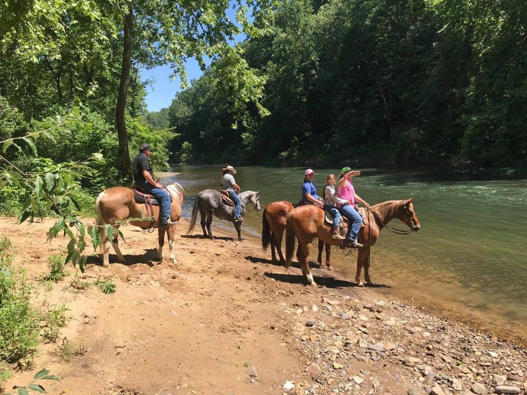 Atingindo as trilhas: O Virginia Horse Center em Lexington, VA 21